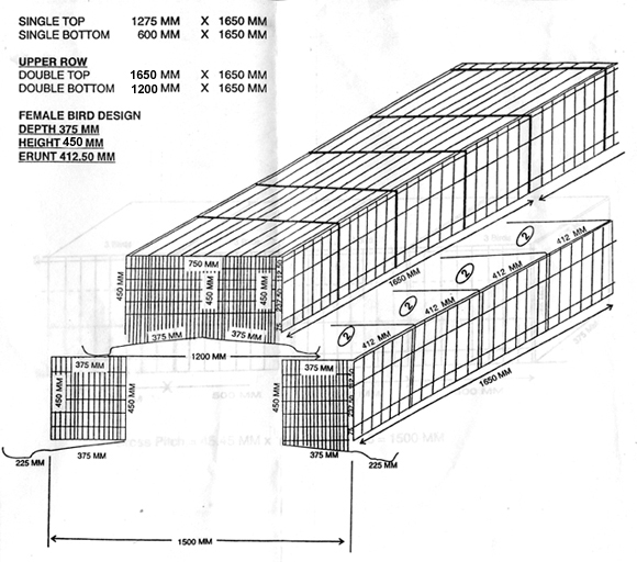 Broiler Parent Cages, Broiler Parent Grower Cages